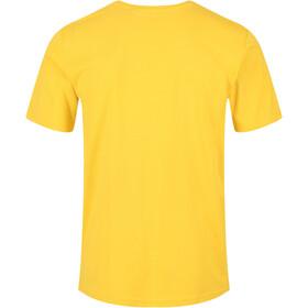 Regatta Tait Camiseta Hombre, amarillo